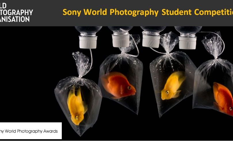 Sony World Photography Student Competition