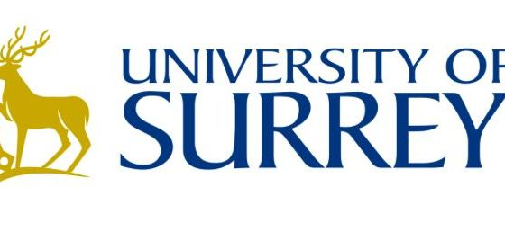 Vice-Chancellor's Studentship Award at University of Surrey's Doctoral College in UK, 2019